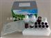 人抗促甲状腺素受体抗体(TRAb) Elisa试剂盒价格电询