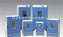 DGG-9030A 立式电热恒温鼓风干燥箱