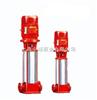 XBD13.5/3.3-I50×9XBD13.5/3.3-I50×9 立式消防稳压泵